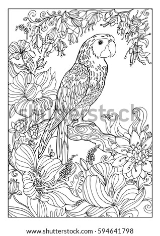 Birds House Coloring Page Stock