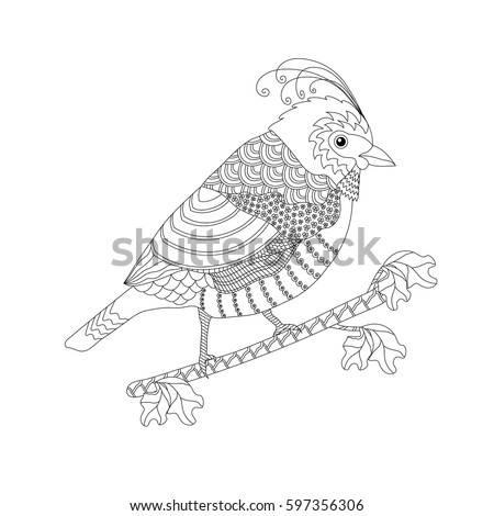 coloring book for adults and children fantasy bird on a branch black and white - Fantasy Coloring Books For Adults