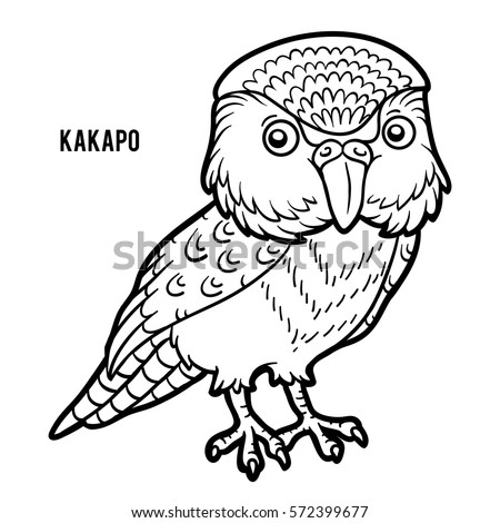 Kakapo Stock Images Royalty Free Images Vectors Shutterstock