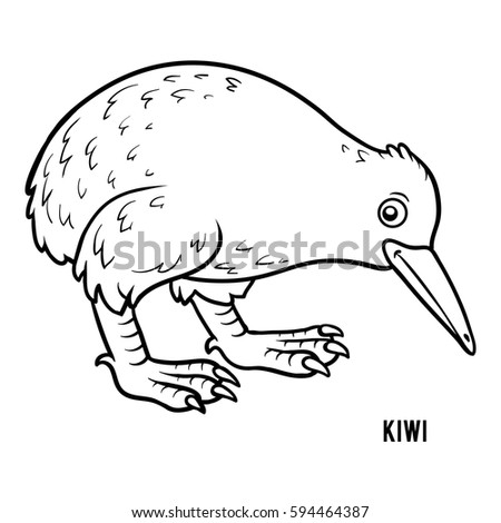 coloring book for children kiwi