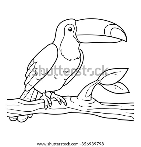 coloring book for children toucan