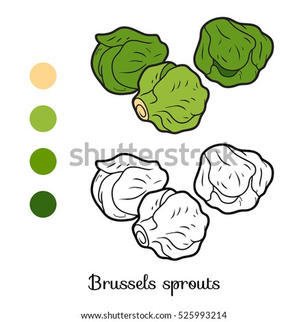 Natural Food Coloring Sprouts