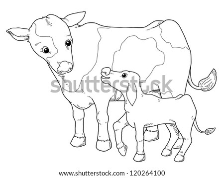 Coloring book - illustration of Cow - stock vector