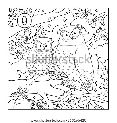 coloring book owl colorless illustration letter o