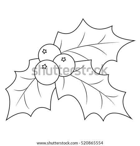 Christmas Mistletoe Stock Images Royalty Free Images