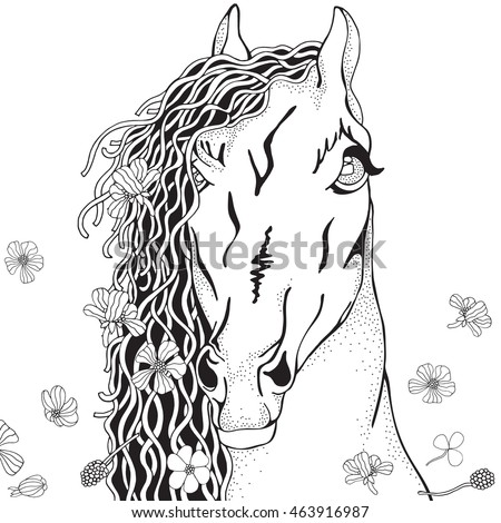 Coloring Book page for Adult and children. Funny Horse with summer flowers in zentangle style. Black and white monochrome background. Doodle hand-drawn.