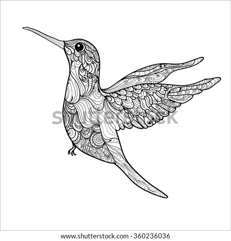 Coloring Book Pages Hummingbird Small Bird Stock Vector 360236036