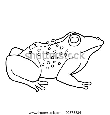 coloring book toad