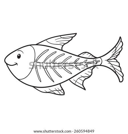 Coloring Book X Ray Fish