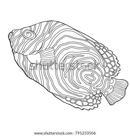Coloring Fish Is Dark Emperor Angelfish Vector Illustration