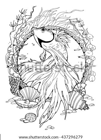 Coloring Page About Betta Fish Different Stock Vector (Royalty Free ...