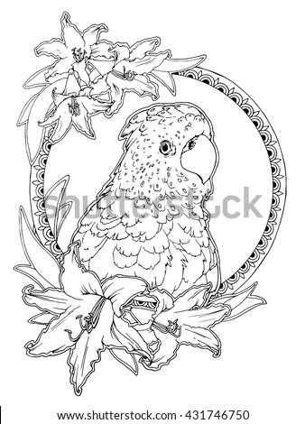 Coloring Page For Adults Antistress Drawing Tropical Bird With Flowers