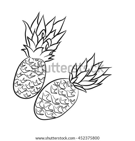 Coloring Page For Adults With A Picture Of Two Pineapples Beautiful Image Tropical Fruits
