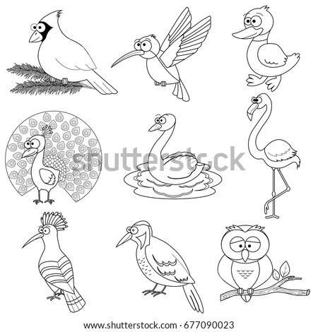 Cardinal coloring pages preschool halloween ~ Outline Drawing Stock Images, Royalty-Free Images ...