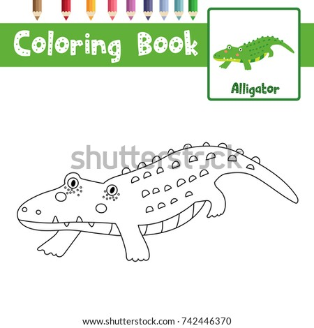 coloring page of alligator animals for preschool kids activity educational worksheet vector illustration - Coloring Page Alligator