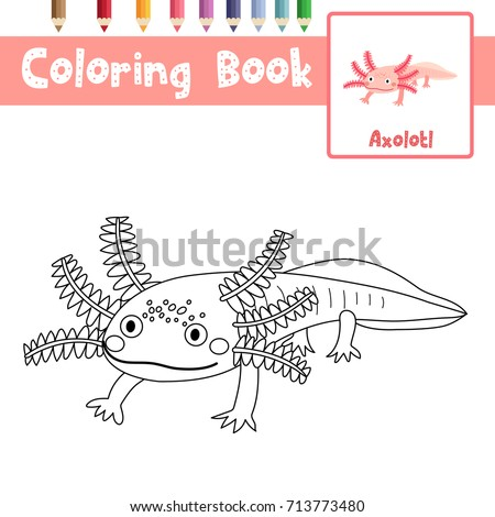 Great Coloring Page Of Axolotl Mexican Salamander Animals For Preschool Kids  Activity Educational Worksheet. Vector Illustration