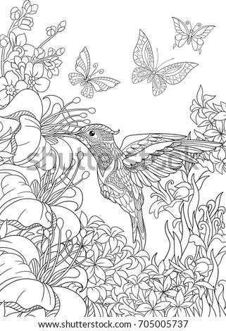 Cartoon Hummingbird Stock Images, Royalty-Free Images ...