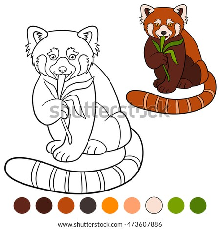 red panda cute coloring pages - photo#27