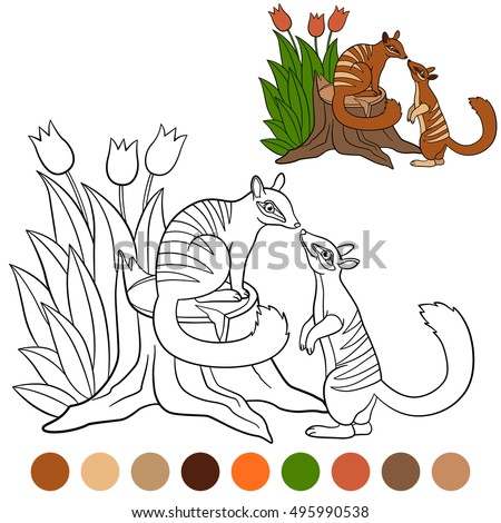 Color Me Hoopoe Cute Beautiful Hoopoe Stock Vector 505808164