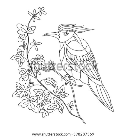 Coloring Page With Fantasy Bird T Shirt Print Design Line Art Vector