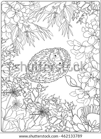 Coloring Page Lovely Hedgehog Garden Coloring Stock Vector 462133789 ...