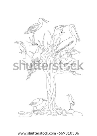 Coloring Page With Tree And Tropical Birds For Kids Adult Book Album