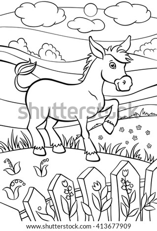 Coloring Pages. Animals. Little Cute Donkey Stands On The Field And Smiles.