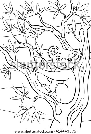 Coloring Pages Animals Little Cute Koala Sits On The Tree And Holds Eucalyptus