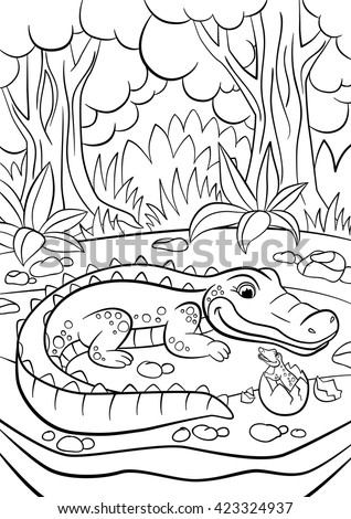 Alligator picture stock images royalty free images for Cute alligator coloring pages
