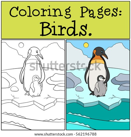 Coloring Pages Birds Mother Penguin Stands With Her Little Cute Baby On The Ice