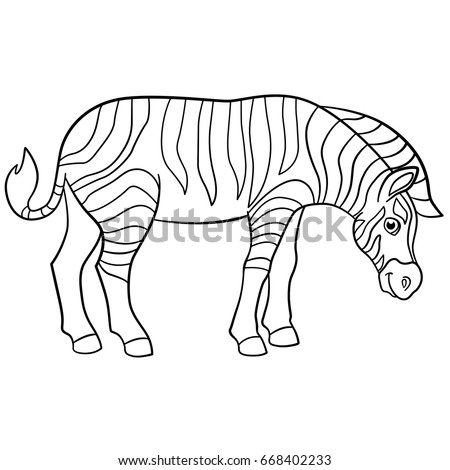 Coloring Pages Cute Beautiful Zebra Stands Stock Vector 668402233