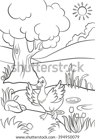 Coloring Pages Cute Duck Runs Pond Stock Vector 394950079 ...