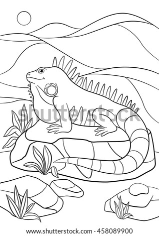 Coloring pages. Cute iguana sits on the rock and smiles.