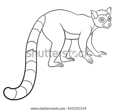 Ringtail lemur coloring page coloring coloring pages for Lemur coloring pages