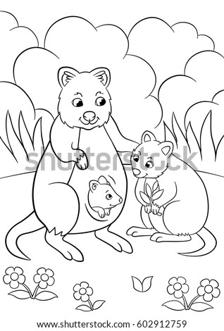 Coloring Pages Mother Quokka Her Little Stock Vector 602912759