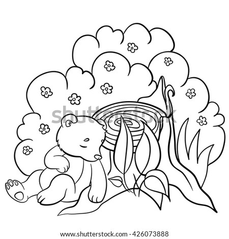coloring pages wild animals little cute baby bear sleeps in the forest - Baby Forest Animals Coloring Pages