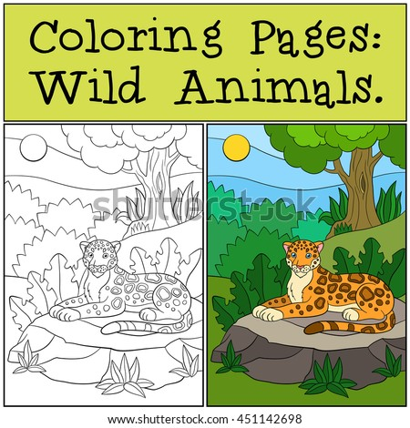 Coloring Pages: Wild Animals. Little cute jaguar lays on the stone in the forest and smiles.