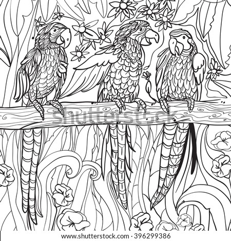 coloring pages with tropical parrots flowers and leaves background vector - Tropical Coloring Pages