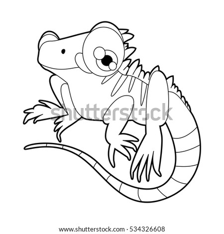 Cute iguana coloring pages for Iguana coloring pages
