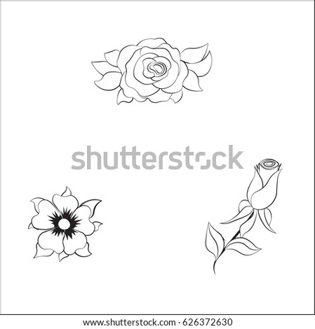 Coloring Rose And Daisy Flower Set