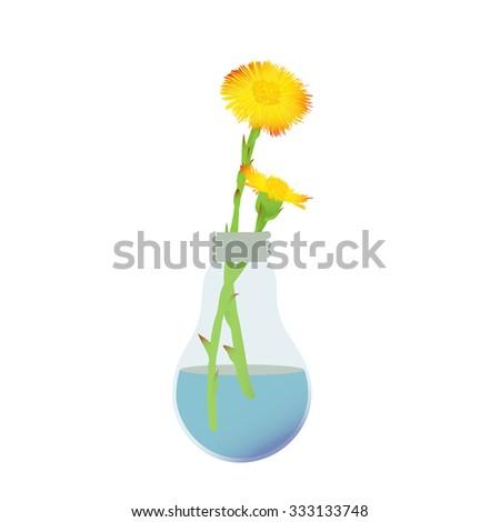Coltsfoot flower in bulb vase - stock vector
