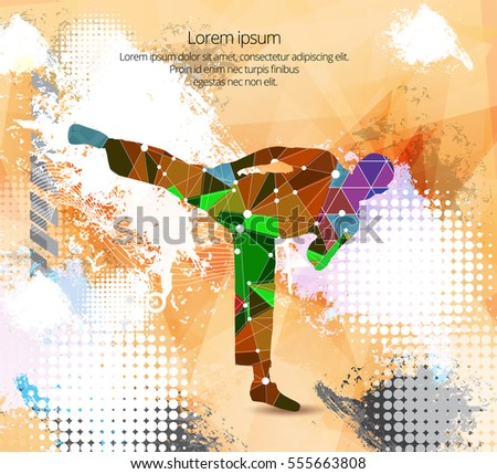 Combat warrior. Karate illustration, vector