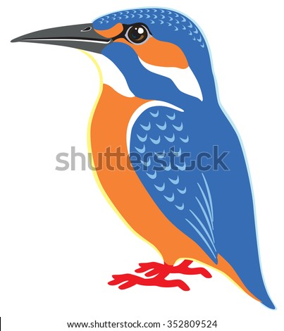 common kingfisher side view isolated image