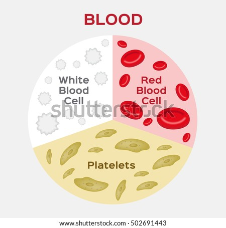 Platelets Diagram Labelled | www.pixshark.com - Images ...