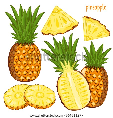 Composition of Pineapple on white background