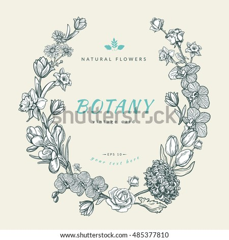 Composition sketch flowers design vintage card stock vector composition of sketch flowers design for vintage card or invitation vector template stopboris