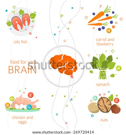 Concept of food and vitamins, which are healthy for your brain / vector illustration / flat style - stock vector