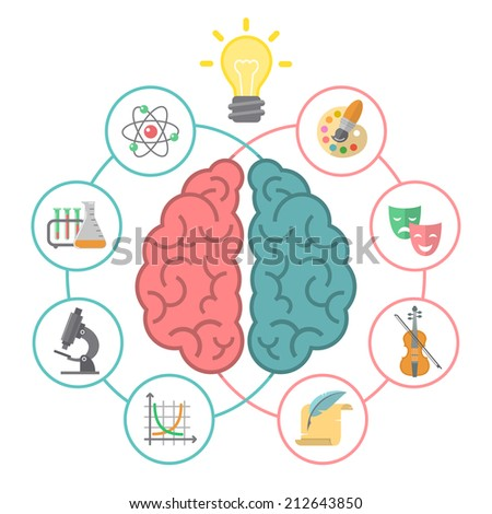Conceptual flat vector illustration of left and right hemispheres of the brain and different icons of the logical and creative activities. - stock vector