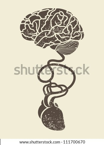 conceptual image of brain and heart connected together - stock vector