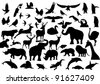 Contour images of fauna on the planet Earth - stock